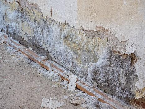 Conséquences D Un Mur Humide Murhumide Fr